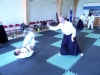KSK Aikido Course at Harrow - August 2011 #1 - Phil Griffin