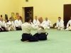 KSK Aikido Course at Aylesbury - January 2012 #1 - Andy McLean