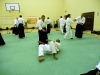 KSK Aikido Course at Aylesbury - July 2012 #1