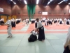 BAB National Aikido Course September 2012