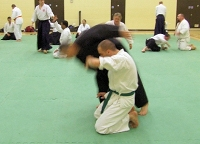 Pictures from the KSK Aikido Course at Aylesbury - November 2012