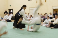 Pictures of Nishi at the KSK National Gradings April 2013