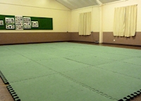 New Sunday Aikido Class
