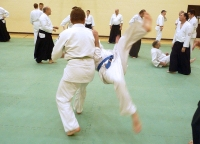 Pictures from the January 2014 KSK Aikido Day Course