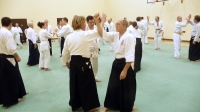 KSK Aikido Course at Aylesbury - January 12th 2014