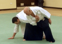 Pictures from the March 15th 2015 KSK Aikido Day Course