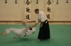 KSK Aikido Course at Aylesbury June 2008