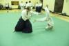 KSK Aikido Course at Aylesbury November 2010