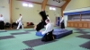 KSK Aikido Course at Pinner Club February 2011 #1